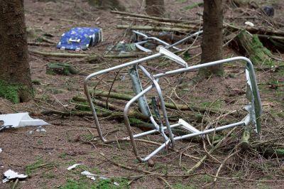 Śmieci do lasu? Grzywna 5000 zł i 30 dni pozbawi