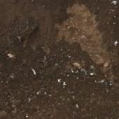 gleba ziemia kamienie